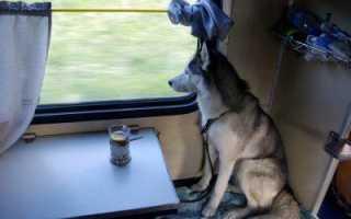 Зл зу и зо в поезде что это