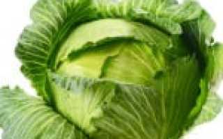 Блюда из капусты для диабетиков 2 типа
