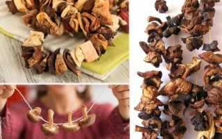 Сколько можно хранить сухие грибы в домашних условиях
